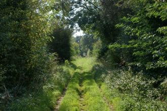 Willoughby Branch Line