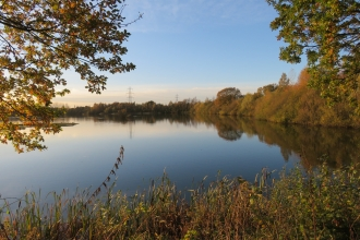 Whisby Nature Park autumn