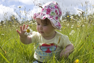 Toddler in meadow