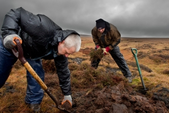 RSPB volunteers carrying out conservation work on moorland